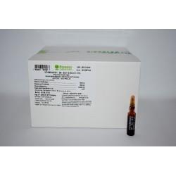 Vitaminas B1-B6-B12 10.000 U.I